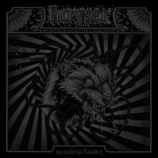 Marderschaden mp3 Album by Hayser