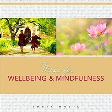 Music For Wellbeing & Mindfulness mp3 Album by Frantz Amathy