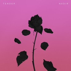 Nadir mp3 Single by Tender
