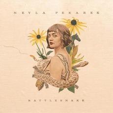 Rattlesnake by Neyla Pekarek