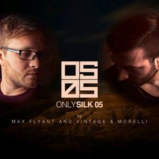 Only Silk 05 mp3 Compilation by Various Artists