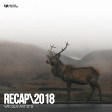 DNBB RECAP - 2018 by Various Artists