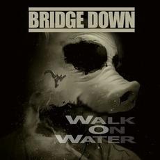 Walk on Water by Bridge Down