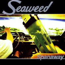 Spanaway mp3 Album by Seaweed