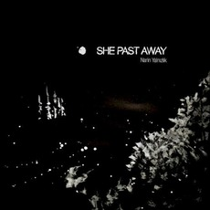 Narin Yalnızlık mp3 Album by She Past Away