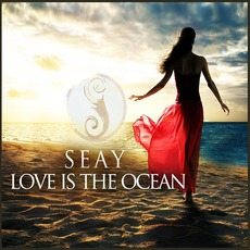 Love Is the Ocean mp3 Single by Seay