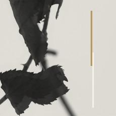 Grafts mp3 Album by Kara-Lis Coverdale