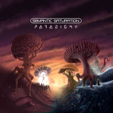 Paradigms mp3 Album by Semantic Saturation