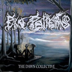 The Dawn Collective mp3 Album by Pain Patterns