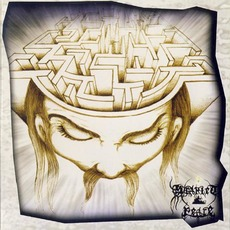 Into The Mind's Labyrinth mp3 Album by Scarlet Peace