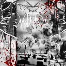 Torment mp3 Album by Mjerim