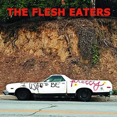 I Used To Be Pretty mp3 Album by The Flesh Eaters