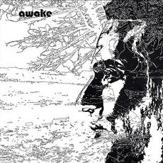 Awake mp3 Album by Uriel Herman
