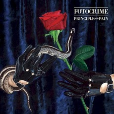 Principle of Pain by Fotocrime
