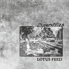 Supervision mp3 Single by Lotus Feed