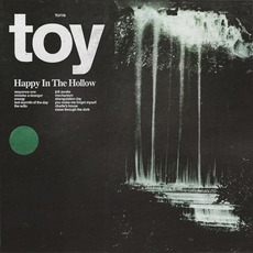 Happy in the Hollow mp3 Album by TOY