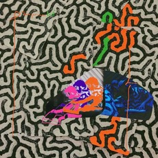 Tangerine Reef mp3 Album by Animal Collective