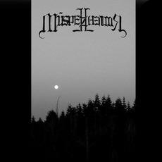 Demo II mp3 Album by Múspellzheimr