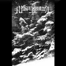 Demo I mp3 Album by Múspellzheimr