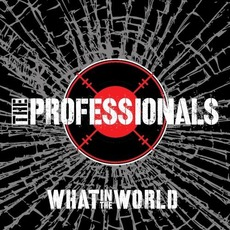 What In The World mp3 Album by The Professionals