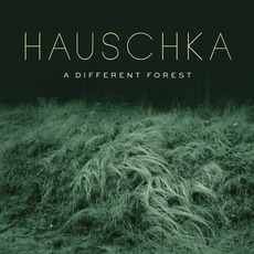 A Different Forest mp3 Album by Hauschka