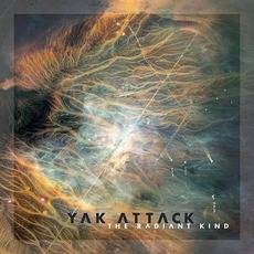 The Radiant Kind mp3 Album by Yak Attack
