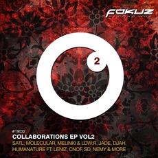 Collaborations EP, Vol.2 by Various Artists