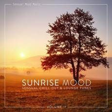 Sunrise Mood, Volume 11 mp3 Compilation by Various Artists