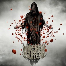 Neverbloom mp3 Album by Make Them Suffer