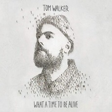 What A Time To Be Alive mp3 Album by Tom Walker
