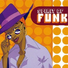 Spirit of Funk mp3 Compilation by Various Artists