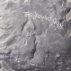 The Young Gods (Deluxe Edition) mp3 Album by The Young Gods