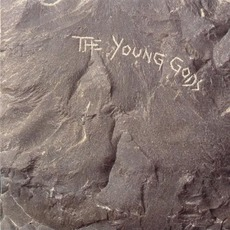 The Young Gods mp3 Album by The Young Gods