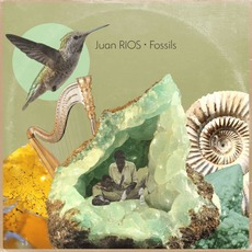 Fossils mp3 Album by Juan RIOS