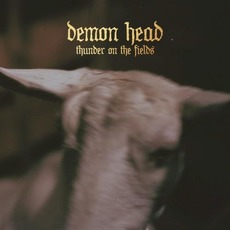 Thunder on the Fields mp3 Album by Demon Head