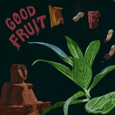 Good Fruit mp3 Album by TEEN