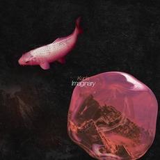 Imaginary mp3 Album by Kupla