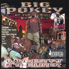 Hardest Pit in the Litter mp3 Album by Big Pokey