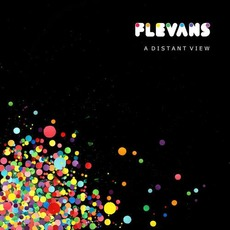 A Distant View mp3 Album by Flevans