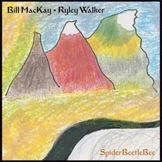 SpiderBeetleBee mp3 Album by Bill MacKay & Ryley Walker