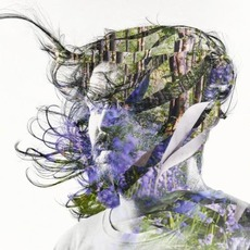 Ribbons (Japanese Edition) by Bibio