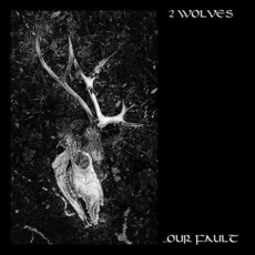 ...Our Fault by 2 Wolves