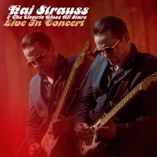 Live in Concert mp3 Live by Kai Strauss & The Electric All Stars