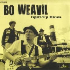 Split-Up Blues mp3 Album by Bo Weavil