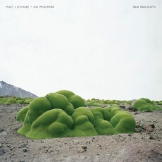 New Rain Duets mp3 Album by Mary Lattimore & Mac McCaughan