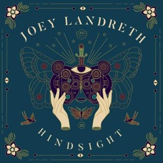 Hindsight by Joey Landreth