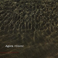 Agora mp3 Album by Fennesz