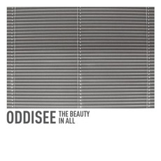 The Beauty in All mp3 Album by Oddisee