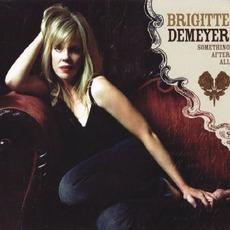 Something After All mp3 Album by Brigitte DeMeyer