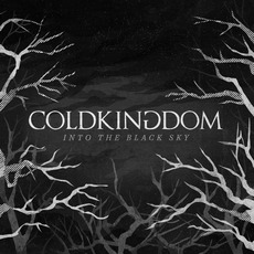Into the Black Sky mp3 Album by Cold Kingdom